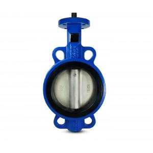 Lepilni ventil, dušilni ventil DN65 - ponikljan disk